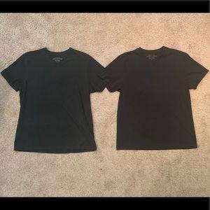 Two Banana Republic T-Shirts